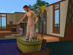 The sims nudity