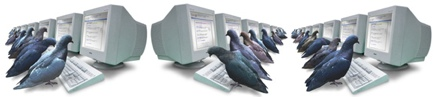 Technology Pigeon System